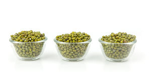 Raw mung  bean Stock Image