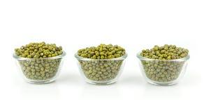 Raw mung  bean Stock Image
