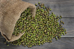 Raw mung beans Stock Photography