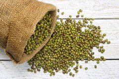 Raw mung beans Stock Images