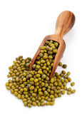 Raw mung beans in scoop Royalty Free Stock Images