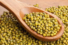 Raw mung beans on spoon Royalty Free Stock Photos