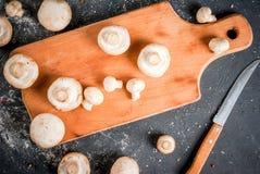 Raw mushroom champignon Stock Images