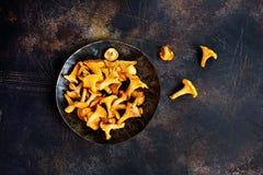 Raw mushroom Stock Image