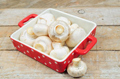 Raw mushrooms Stock Photography