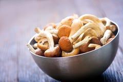 Raw mushrooms Stock Photography