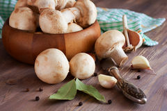 Raw mushrooms, garlic, bay leaf and pepper.pared for cooking Royalty Free Stock Photos