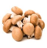 Raw mushrooms Royalty Free Stock Image