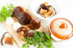Raw mushrooms and other vegetables, ceramic pot Stock Images