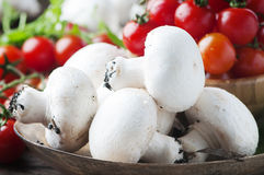 Raw mushrooms, tomato and rocket on the wooden table Stock Image