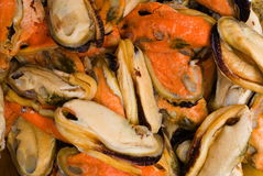 Raw Mussel Stock Photo
