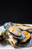 Raw mussels Royalty Free Stock Photography