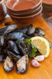 Raw mussels Royalty Free Stock Photo