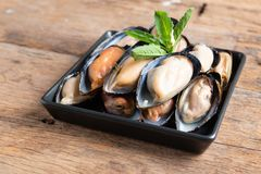 Raw mussels in black plate. On wooden background royalty free stock photo