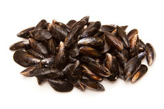 Raw mussels or clams. A pile of raw mussels or clams on a white background Stock Photo