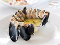 Raw Mussels with lemon sauce. In a bowl Royalty Free Stock Image