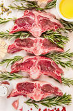 Raw mutton meat, lamb loin chops with fresh herbs and oil, top view. Close up royalty free stock photography