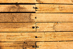 Raw natural wood plank with nails Royalty Free Stock Image