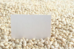 Raw Navy Beans with Blank Card Stock Photography