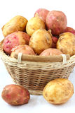 Raw new potatoes Royalty Free Stock Photos