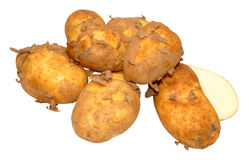 Raw New Potatoes Stock Images