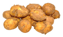 Raw New Potatoes Royalty Free Stock Photography