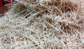 Raw Noodles. A closeup click of white uncooked raw noodles stock image