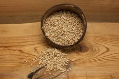 Raw oat grains in a coconut shell, ingredient for delicious healthy breakfast on a wooden background, copy space royalty free stock photos