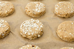 Raw oatmeal cookie dough on a baking sheet Royalty Free Stock Images