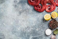 Raw octopus cooking Royalty Free Stock Images