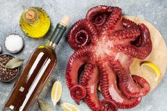 Raw octopus cooking Royalty Free Stock Photos