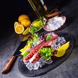 Raw octopus on the ice. A tasty and raw octopus on the ice Stock Images