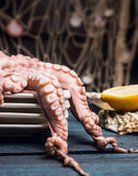 Raw Octopus in plates on blue wooden table Stock Photos