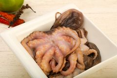 Raw octopus. Ready for cooking Royalty Free Stock Images