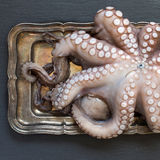 Raw octopus on tray Royalty Free Stock Images