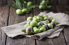 Raw olive for making oil. On the wooden table, selective focus Stock Photo