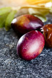 Raw olives with leaves. Close up of Fresh raw olives with leaves on gray stone background Stock Photo