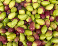 Raw olives for sale Royalty Free Stock Images