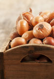 Raw onion in basket Stock Photos