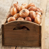 Raw onion in basket and on a table Stock Photos