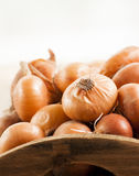 Raw onion in basket and on a table Stock Photo