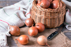Raw onion in basket on a table Royalty Free Stock Image