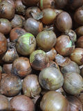 Raw onion Royalty Free Stock Images
