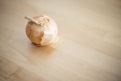 Raw onion on wood table Stock Image