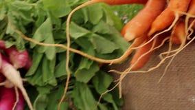 Raw orange carrots farmers market vegetable closeup stock footage