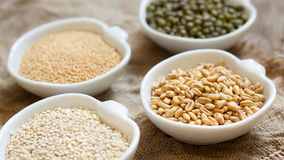 Raw Organic Amaranth and quinoa grains, wheat and mung beans Stock Images