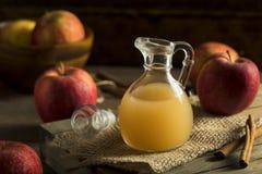 Raw Organic Apple Cider Vinegar. In a Bottle Royalty Free Stock Photo
