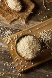 Raw Organic Arborio Rice. In a Bowl Royalty Free Stock Photo