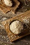 Raw Organic Arborio Rice. In a Bowl Royalty Free Stock Photo