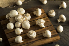 Raw Organic Baby Button Mushrooms Royalty Free Stock Photos